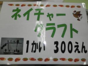 PB180009.JPG